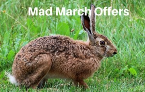 Mad-March-Offers
